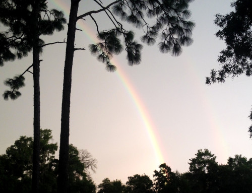 Double Rainbow - Photo by Russ Chastain